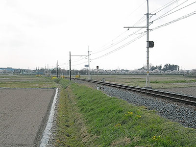 20100412r.jpg