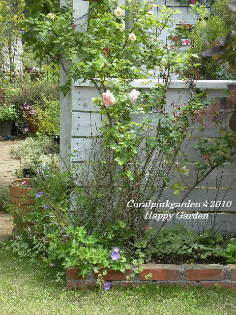 Happy Garden2