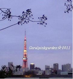 2011東京タワー2