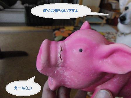 痛いです by豚さん