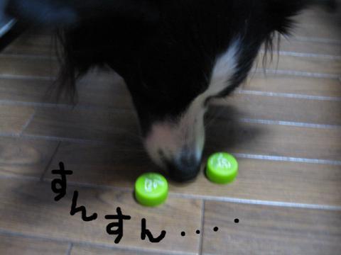 IMG_1261★