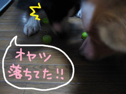 IMG_1270★