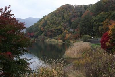shuku-IMG_7868.jpg