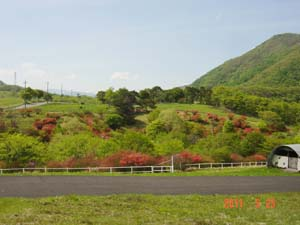 OKAMURA2.jpg