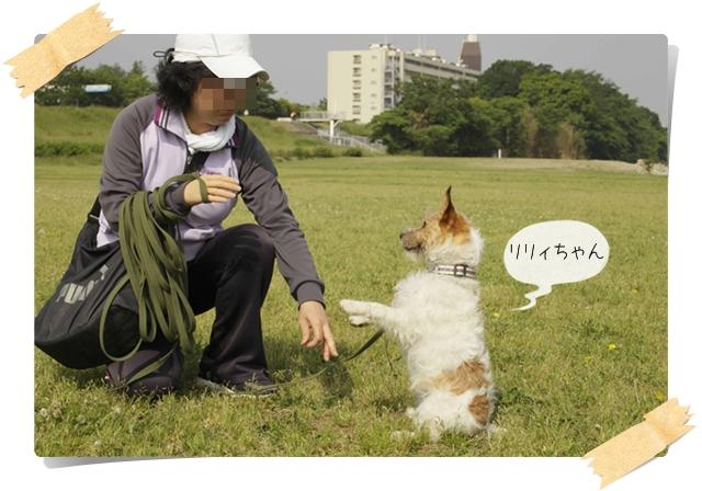 虎太郎の友03