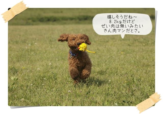 虎太郎の友08