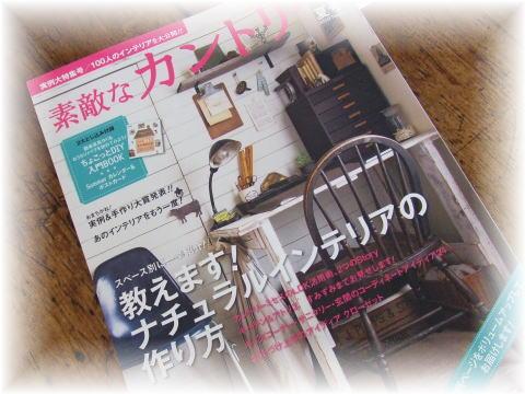 blog507.jpg