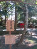 201211静岡_11