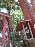 201211静岡_22
