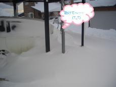 2012.2.2豪雪の朝①