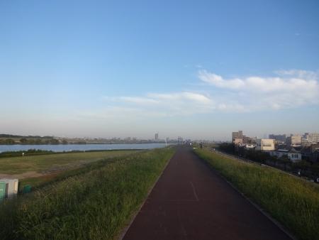 011江戸川CR左岸を北上、向かい風