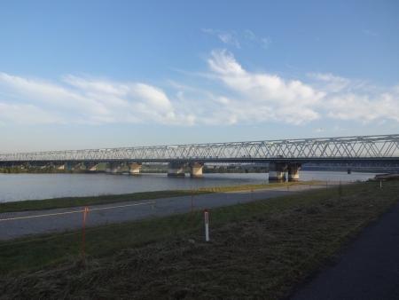 012いつもの市川橋、形式は連続鋼桁複合橋