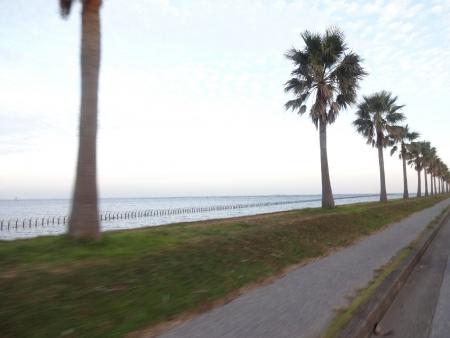 014袖ケ浦海浜公園前の直線道路、内海がきれい
