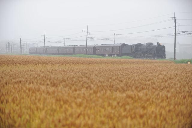 上越線 C6120 渋川