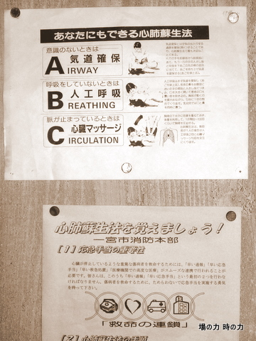 P1030843.jpg