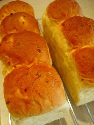 1359-2パン