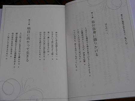 13825book (2)
