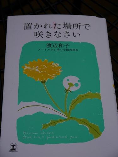 13827book (2)