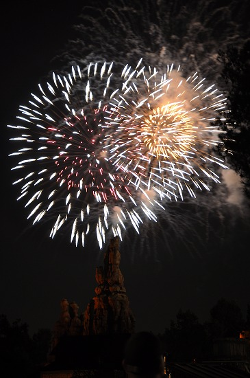 LA Disney21