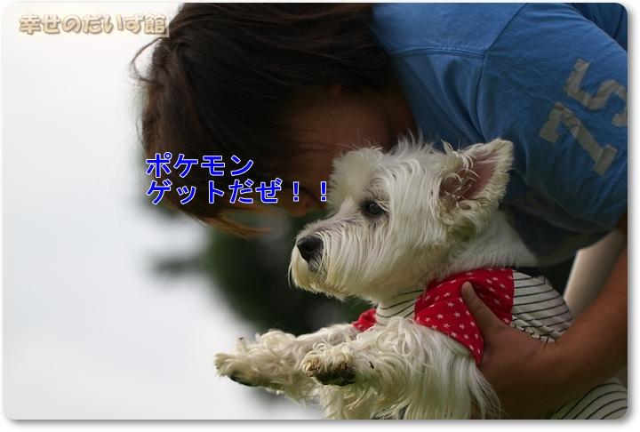daizukanIMG_3460.jpg