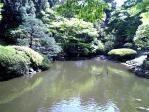 景色 4月25日 附属自然教育園3