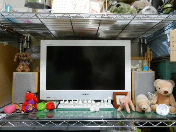 DSCN0376_convert_20111109164113.jpg