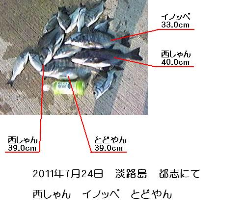 20110724awajisima3.jpg