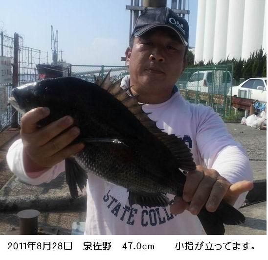 コピー ~ 20110828izumisano