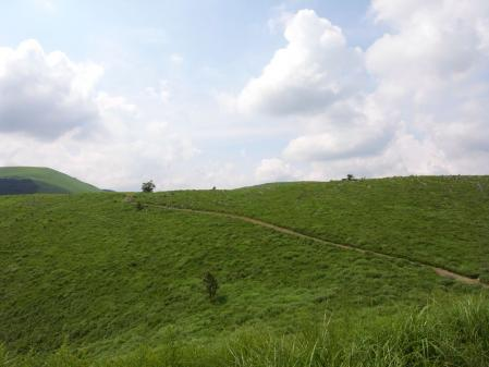 丘をのぼろう