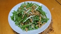 水菜サラダ 20170207