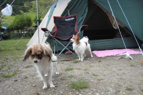 キャンプ②