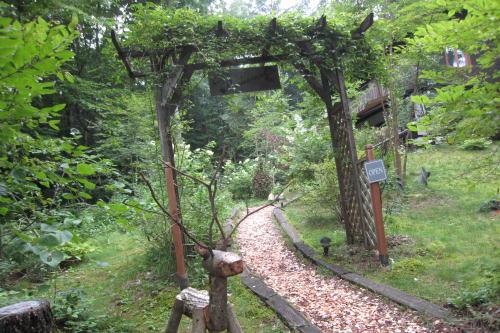森の小径②