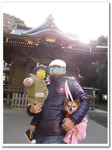 110105hatsumoude2.jpg