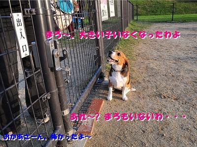 s-大きい子と20146