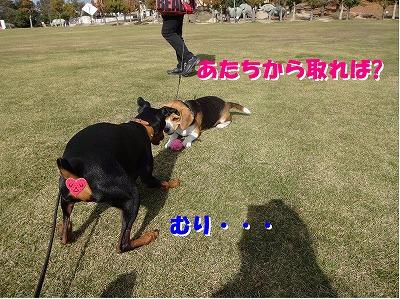 s-遠足③15