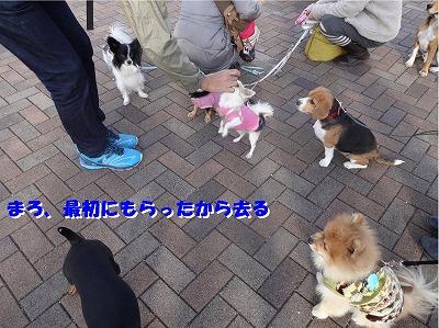 s-遠足③27