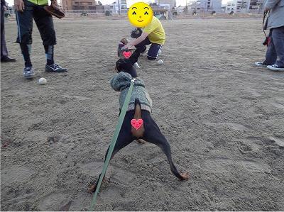 s-公園散歩201412②6