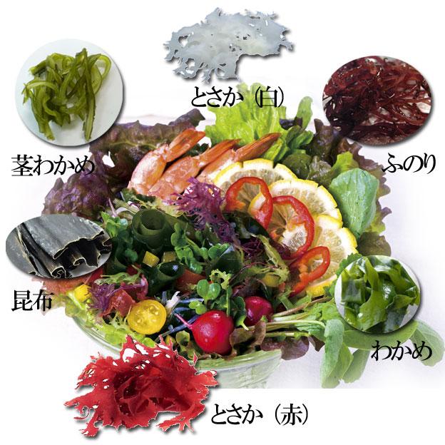 食べても太らないダイエット海藻