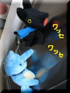 001_20101229214003.jpg