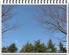 001_20110124230628.jpg