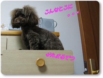 002_20110530164218.jpg