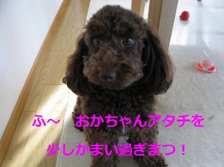 006_convert_20100508092310.jpg