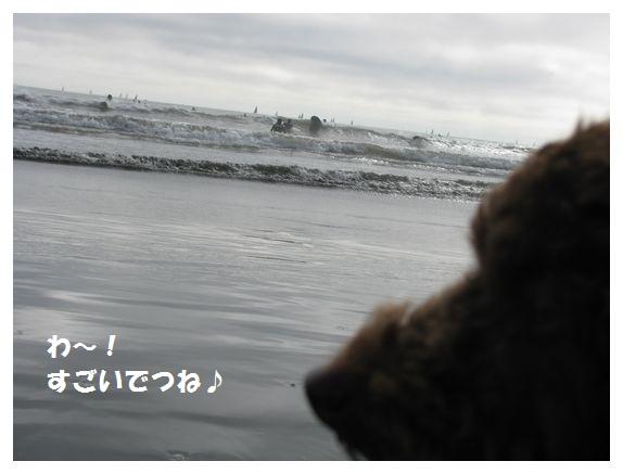 01_20101010193543.jpg