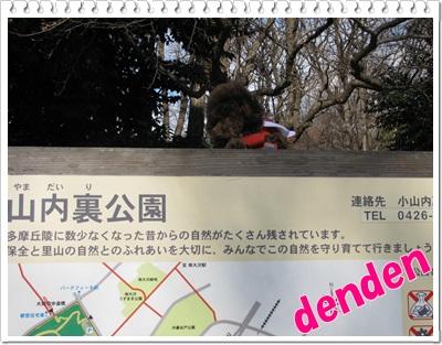 02_20110130200008.jpg