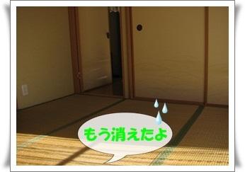 03_20110112151636.jpg