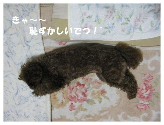 05_20101004174826.jpg