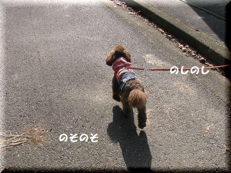 1_20101105144950.jpg