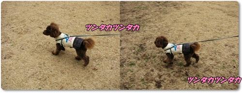 1_20110303205724.jpg