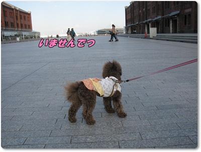 1_20110324200732.jpg