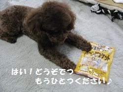 2_20101028191610.jpg